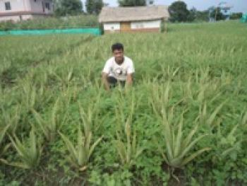 Pribartan Nepal04